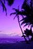 beachlover5008